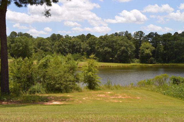 408 Turtleback Trail, Enterprise, AL 36330 (MLS #167797) :: Team Linda Simmons Real Estate