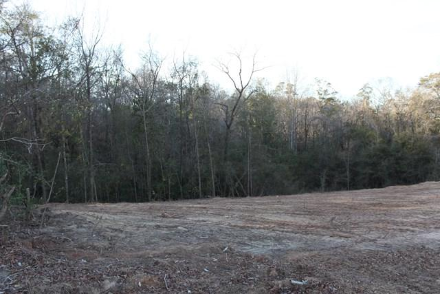 109 Doveland Court, Enterprise, AL 36330 (MLS #168152) :: Team Linda Simmons Real Estate