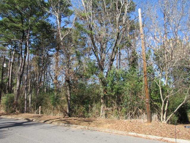 0 Douglas Brown Circle, Enterprise, AL 36330 (MLS #168168) :: Team Linda Simmons Real Estate