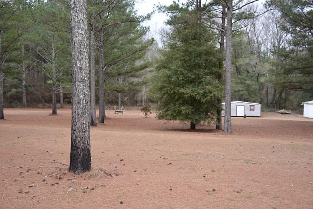 366 County Road 417, Elba, AL 36323 (MLS #168310) :: Team Linda Simmons Real Estate