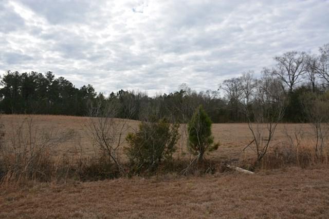 0 Briar Hill Drive, Dothan, AL 36301 (MLS #168377) :: Team Linda Simmons Real Estate