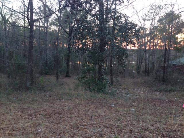 TBD Hickory Tree Lane, Daleville, AL 36322 (MLS #168584) :: Team Linda Simmons Real Estate