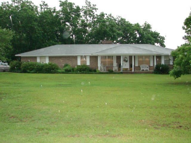 81 S County Road 75, Pansey, AL 36370 (MLS #169665) :: Team Linda Simmons Real Estate