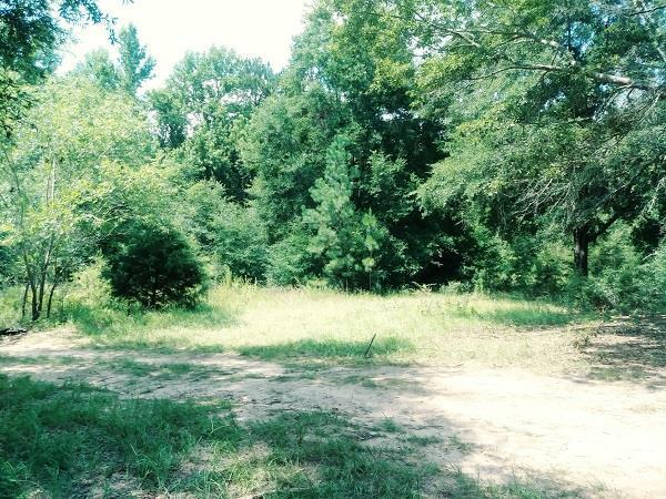 54 Schaffer Rd., Newton, AL 36352 (MLS #170322) :: Team Linda Simmons Real Estate