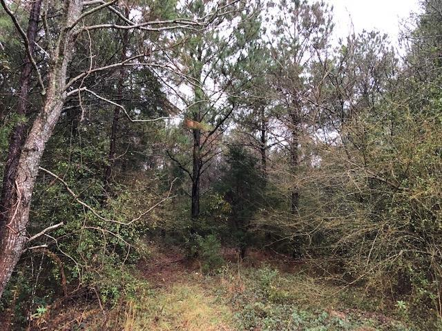 0 Will Logan Road, Ozark, AL 36360 (MLS #172013) :: Team Linda Simmons Real Estate