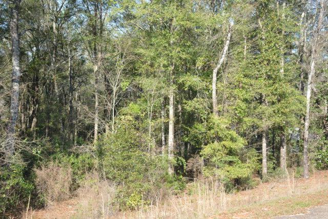 0 Private Road 1702, Enterprise, AL 36330 (MLS #172171) :: Team Linda Simmons Real Estate