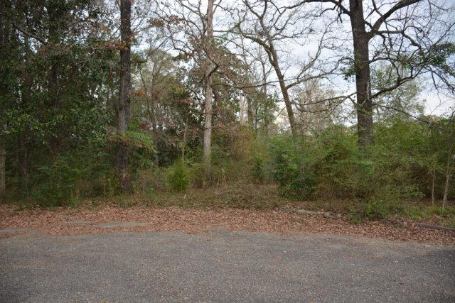 TBD Montevallo Court, Enterprise, AL 36330 (MLS #172296) :: Team Linda Simmons Real Estate