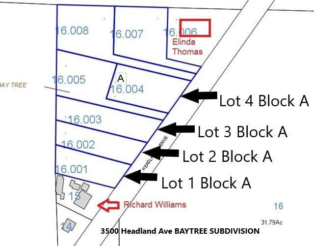 3500 Headland Ave Lot 3 Block A, Dothan, AL 36303 (MLS #172312) :: Team Linda Simmons Real Estate