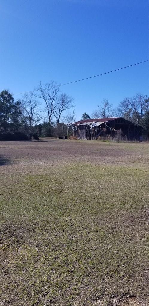 439 Bethlehem Road, Midland City, AL 36350 (MLS #172627) :: Team Linda Simmons Real Estate