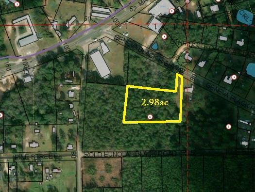 2.98 Acres E County Road 4, Geneva, AL 36340 (MLS #173672) :: Team Linda Simmons Real Estate
