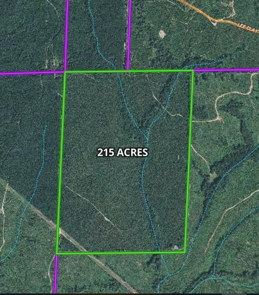 0 Hey. 82 West, Eufaula, AL 36027 (MLS #174573) :: Team Linda Simmons Real Estate