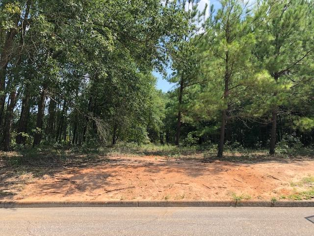 0 Meadowview  Drive, Dothan, AL 36305 (MLS #174947) :: Team Linda Simmons Real Estate