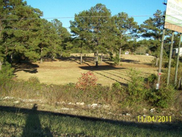 9087 S Us 231, Dothan, AL 36303 (MLS #174971) :: Team Linda Simmons Real Estate