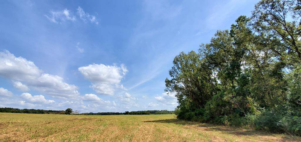 20.4 AC Ame Rd Lot 11 - Photo 1