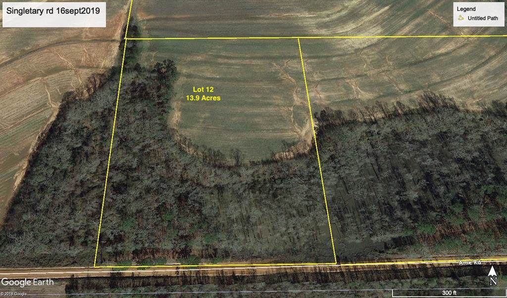 13.9 Ac Ame Rd Lot 12 - Photo 1