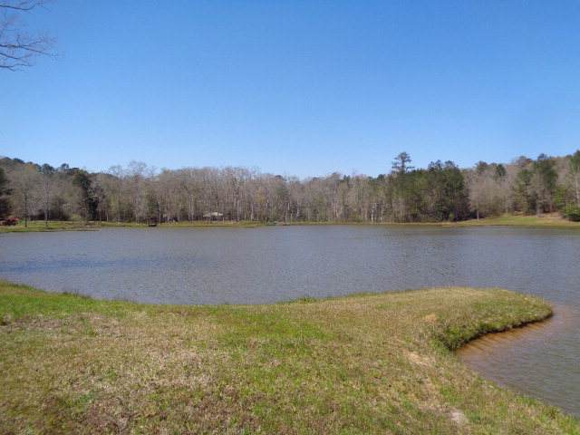 24+/- ac Hwy 231 (24+-Ac On 7+-Ac Lake), Ozark, AL 36360 (MLS #175702) :: Team Linda Simmons Real Estate