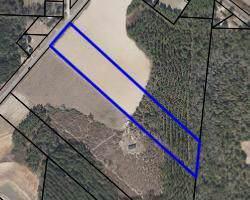0 57, Abbeville, AL 36310 (MLS #175720) :: Team Linda Simmons Real Estate