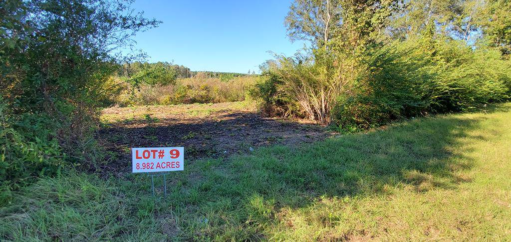 8.9 Acre Hwy 52  Lot 9 Rehobeth School District 8.9 Acres - Photo 1