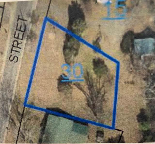 00 Forrest St, Headland, AL 36345 (MLS #175861) :: Team Linda Simmons Real Estate