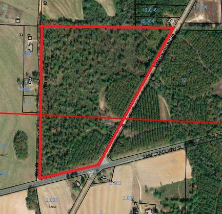 0 Benton Store Rd, Columbia, AL 36319 (MLS #176329) :: Team Linda Simmons Real Estate