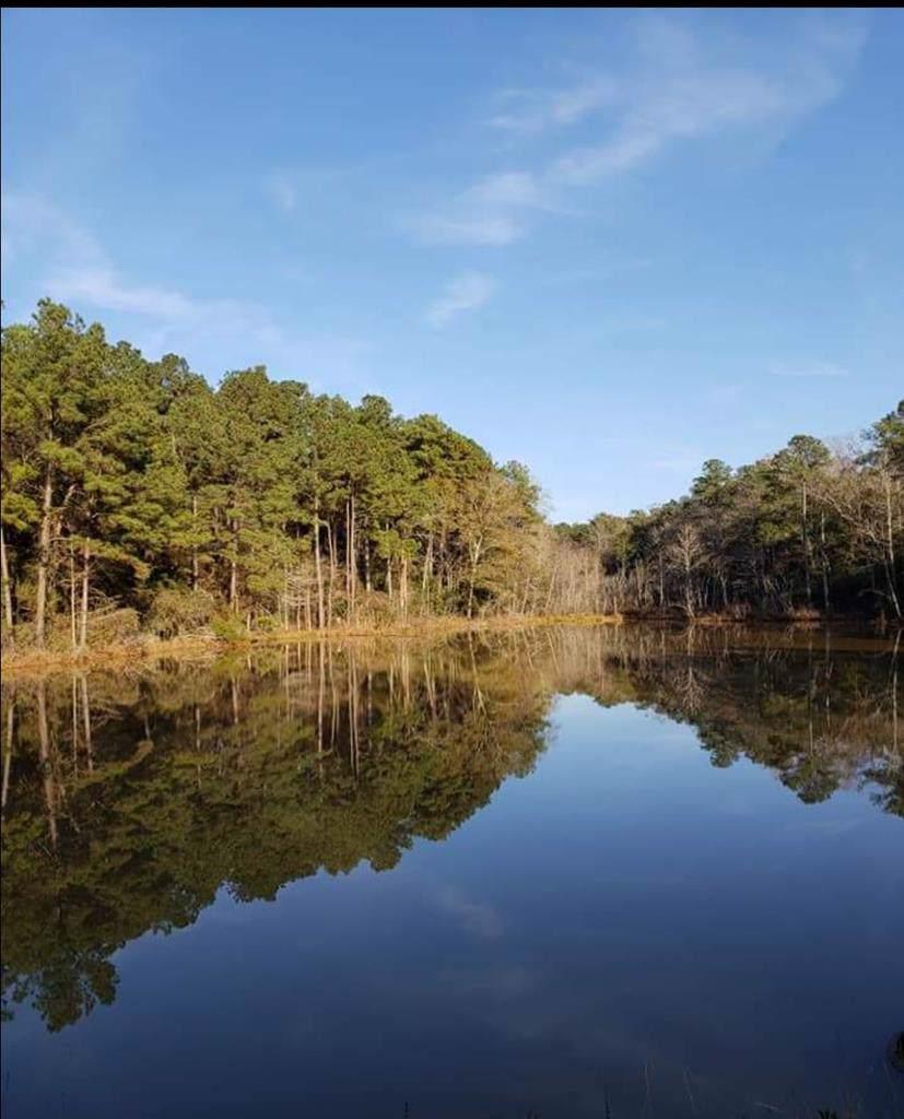 13 acres County Road 1 - Photo 1