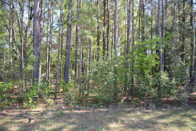 Lot 8 Forest Lake Drive, Elba, AL 36323 (MLS #176670) :: LocAL Realty