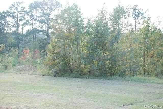 00 Mixon School Road, Ozark, AL 36360 (MLS #176817) :: Team Linda Simmons Real Estate