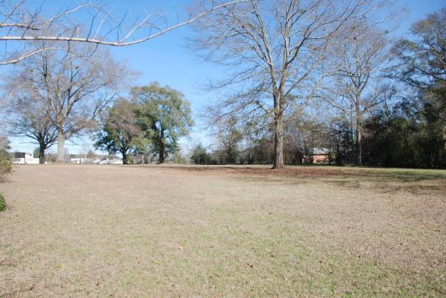 TBD Rucker Boulevard, Enterprise, AL 36330 (MLS #177036) :: Team Linda Simmons Real Estate