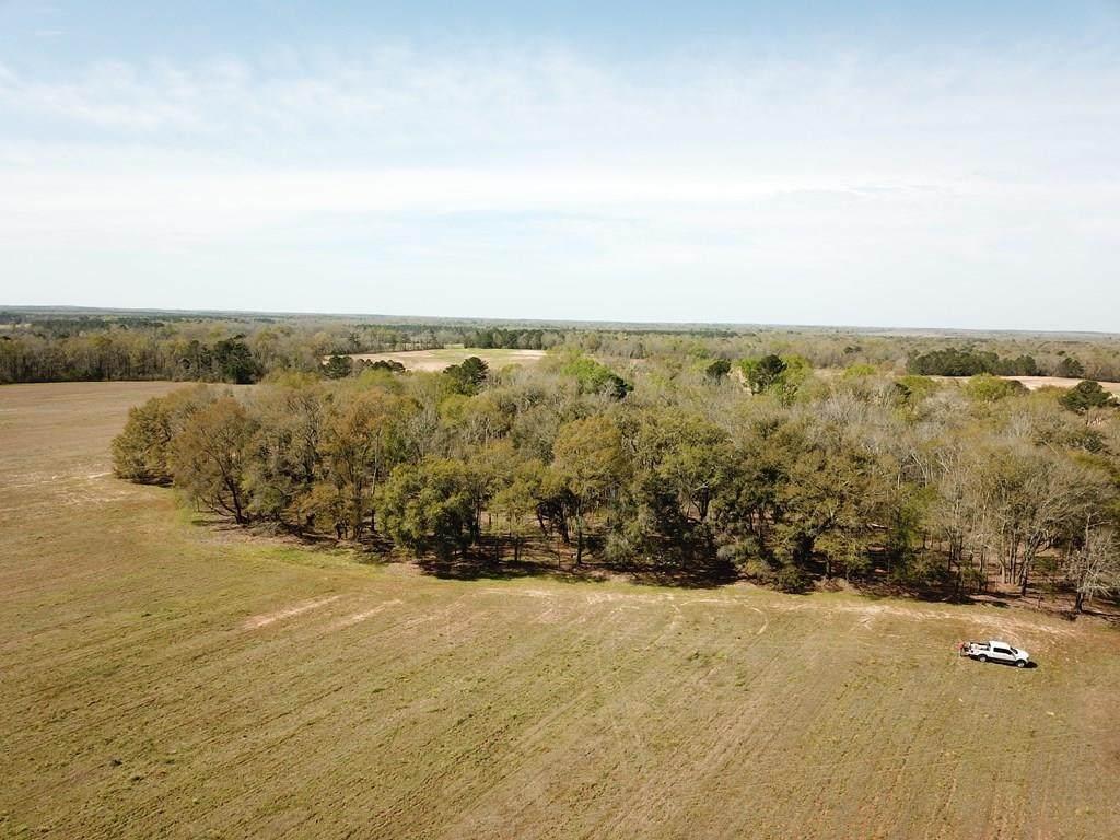 25 Acres Singletary Rd - Photo 1
