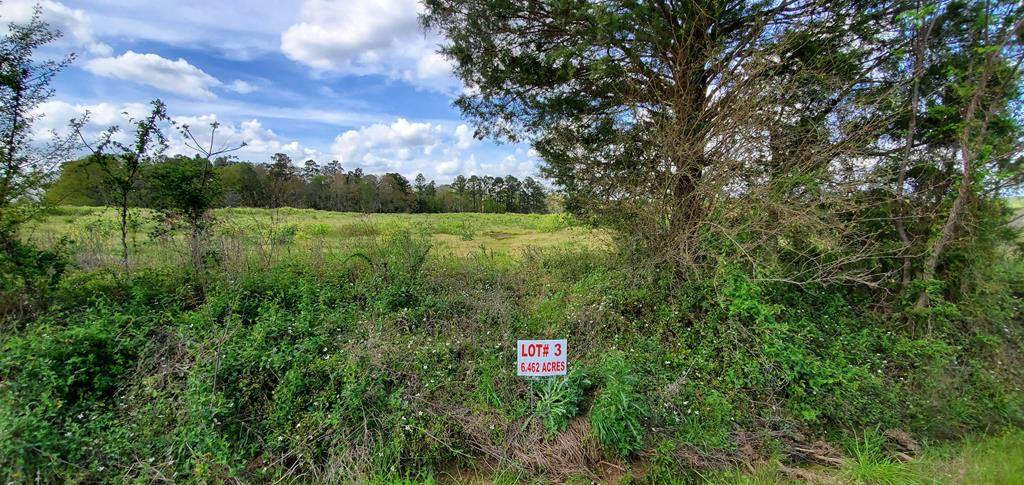 6.4 Acre North County Road 33    6.4 Acres Lot 3 - Photo 1