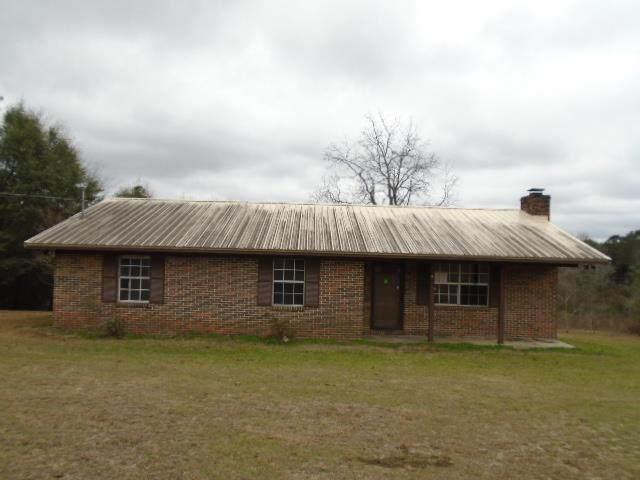 1400 Pine Level Road, Brantley, AL 36009 (MLS #177354) :: Team Linda Simmons Real Estate