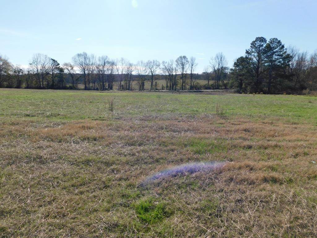 283 County Road 3314 - Photo 1