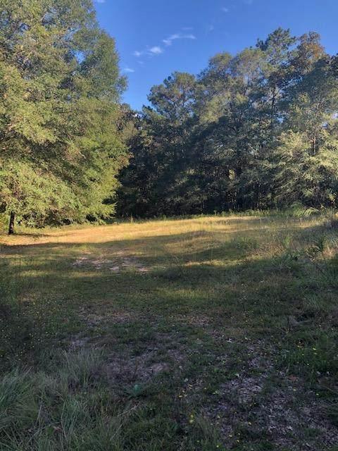 955 County Road 549, Newton, AL 36352 (MLS #180544) :: Team Linda Simmons Real Estate