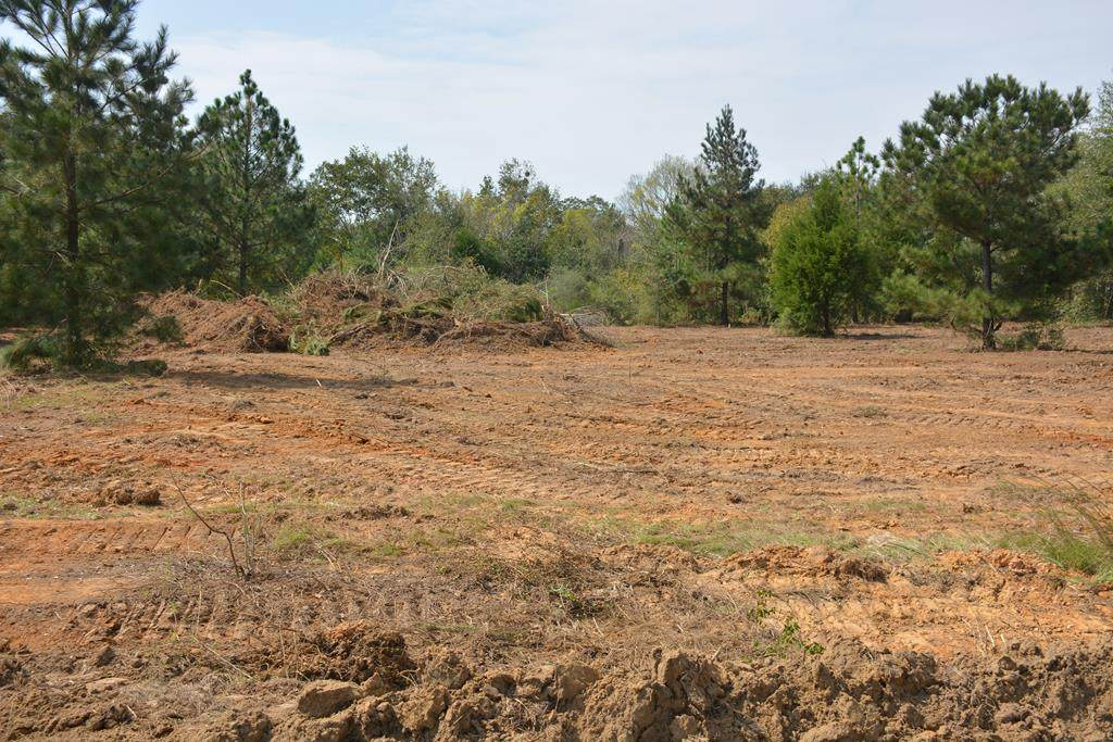 Lot B Highway 167 South - Photo 1