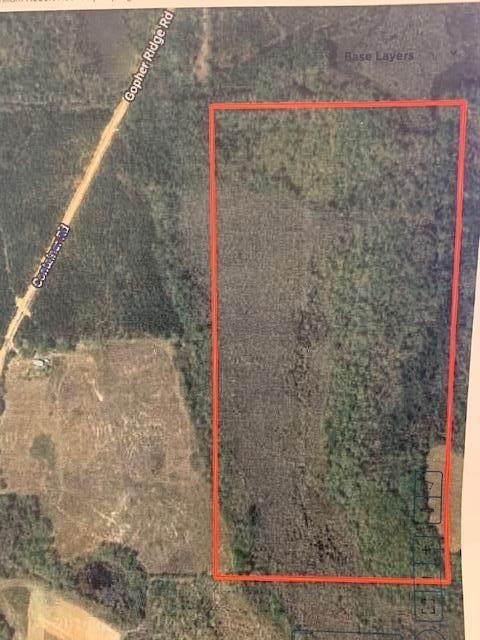 00 Gopher Ridge Rd, Samson, AL 36477 (MLS #181171) :: Team Linda Simmons Real Estate