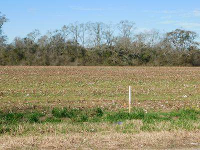 Lot 8 W. Cook Rd, Taylor, AL 36301 (MLS #181448) :: Team Linda Simmons Real Estate