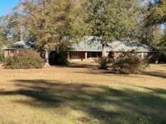 3007 Mimosa, Dothan, AL 36301 (MLS #181728) :: Team Linda Simmons Real Estate