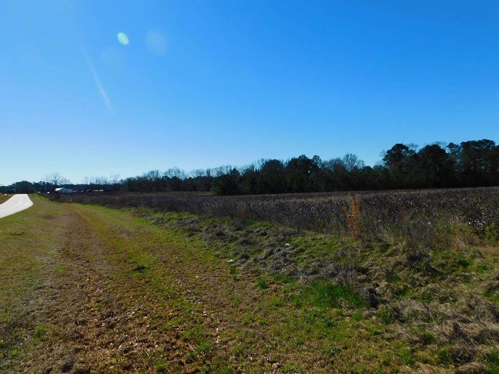 0 Singletary Road - Photo 1