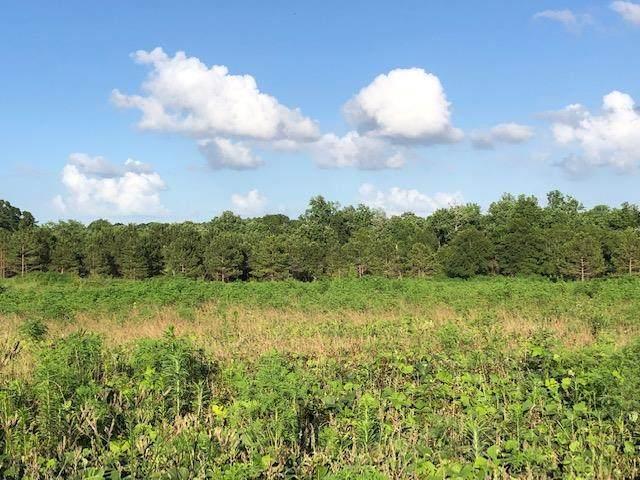 0000 Iris Rd, Dothan, AL 36301 (MLS #181766) :: Team Linda Simmons Real Estate