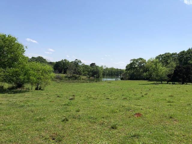 2545 County Road 67, Clopton, AL 36017 (MLS #182251) :: Team Linda Simmons Real Estate