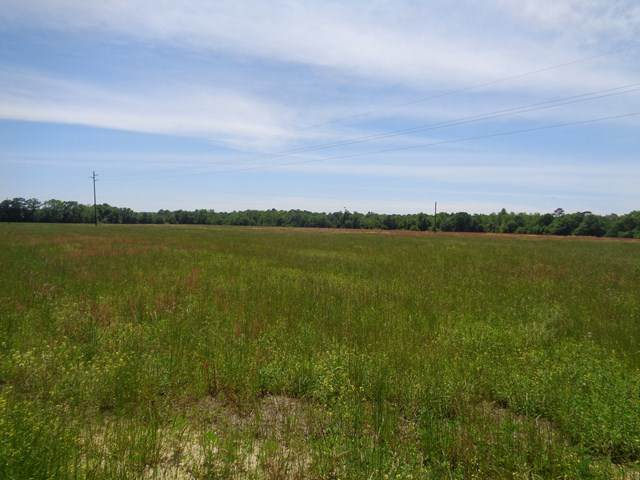 5.51+/- National Rd, Rehobeth, AL 36301 (MLS #182352) :: Team Linda Simmons Real Estate