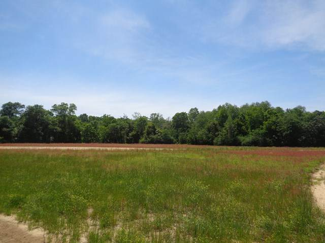 17.48+/-ac National Rd, Rehobeth, AL 36301 (MLS #182360) :: Team Linda Simmons Real Estate