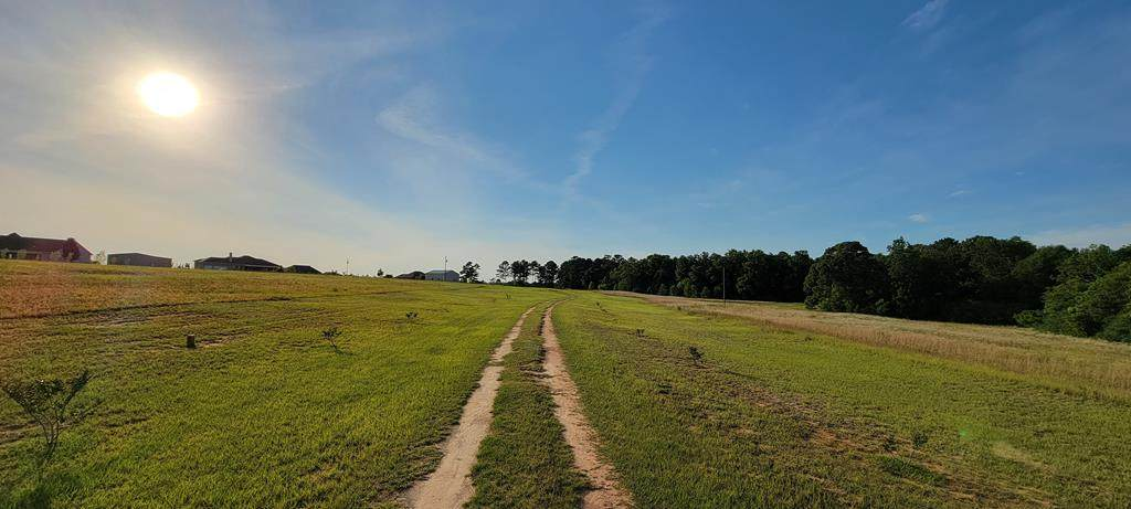 667 County Rd 6 (6.89 Acres) - Photo 1