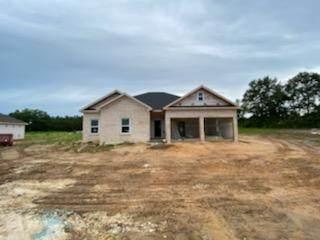 2143 County Rd 49, Slocomb, AL 36375 (MLS #183335) :: Team Linda Simmons Real Estate