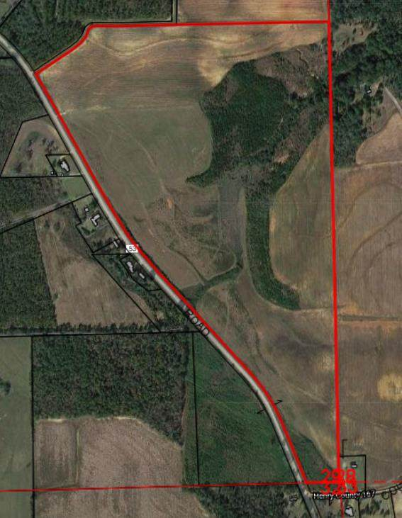 0 E County Rd 53, Columbia, AL 36319 (MLS #183375) :: Team Linda Simmons Real Estate