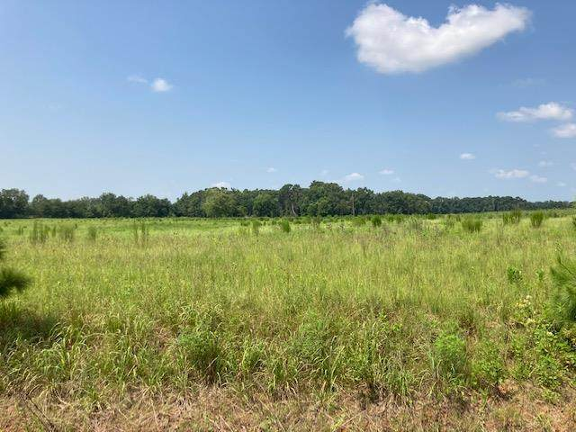 3444 Singletary Road, Slocomb, AL 36375 (MLS #183474) :: Team Linda Simmons Real Estate