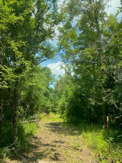3128 Highway 105, Ozark, AL 36360 (MLS #183484) :: Team Linda Simmons Real Estate