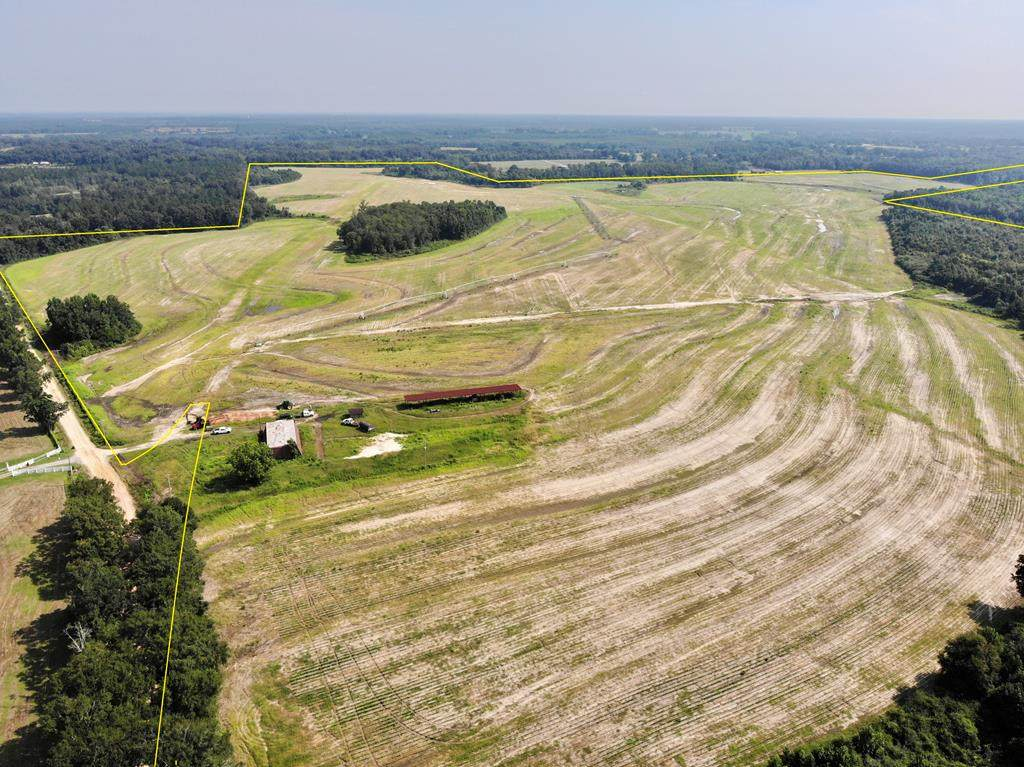 378 acres Old Chipley Road - Photo 1
