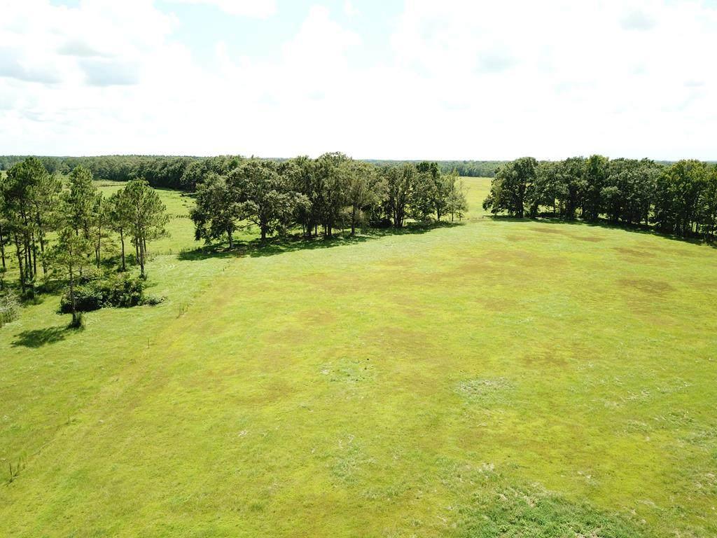 8 Acres County Rd 4   ( 8 Acres ) - Photo 1