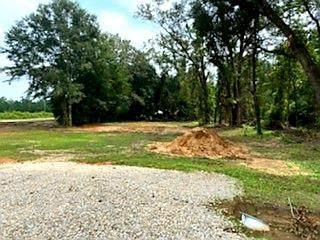 21 Hanging Moss Trail, Cottonwood, AL 36320 (MLS #184002) :: Team Linda Simmons Real Estate